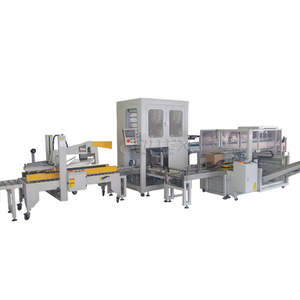Catch Up Type Carton Packing Machine